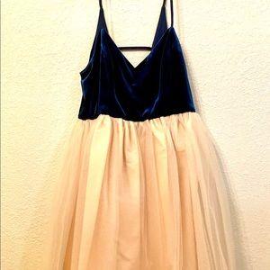 Lauren Conrad Runway Velvet & Tulle Dress